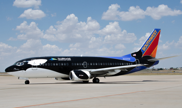 A Southwest Airlines painted in the Shamu livery. Grin or grimace? (Photo: Midland Airport)