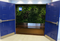 "Expect to see a ""living wall"" like this one in Las Vegas at SFO's new Centurion Lounge (Photo: Chris McGinnis)"