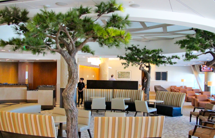 American Admirals Clubs get consistent new look, feel