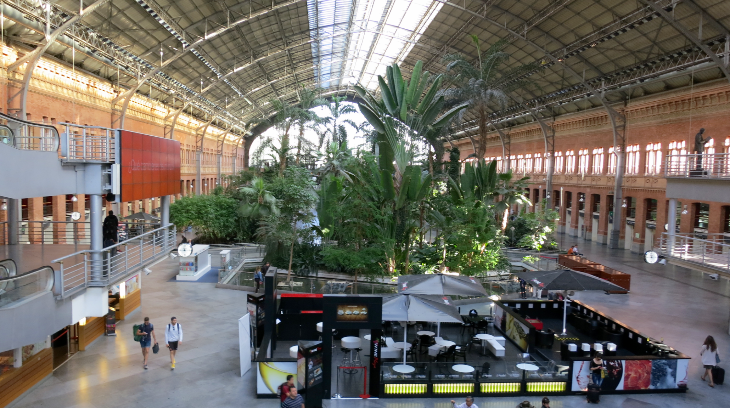 Madrid's exotic Atocha Station (Photo: Chris McGinnis)