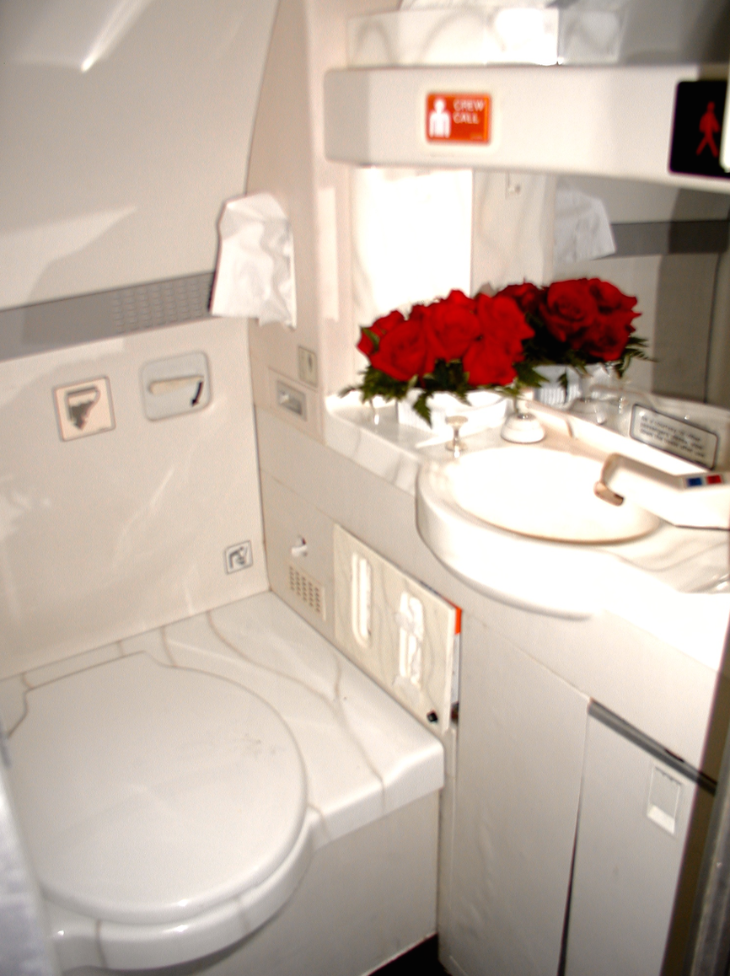 Lavatories on the Concorde nothing lavish- except for the roses! (Chris McGinnis)