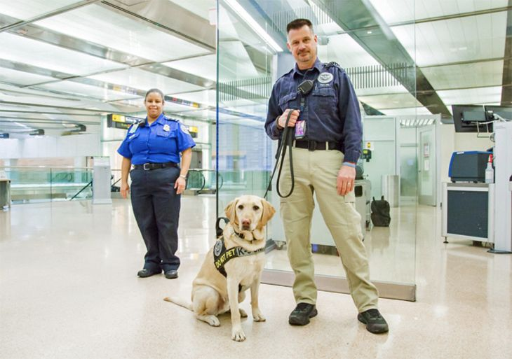 "TSA officers are trained to look for ""suspicious"" passenger behavior. (Image: TSA)"
