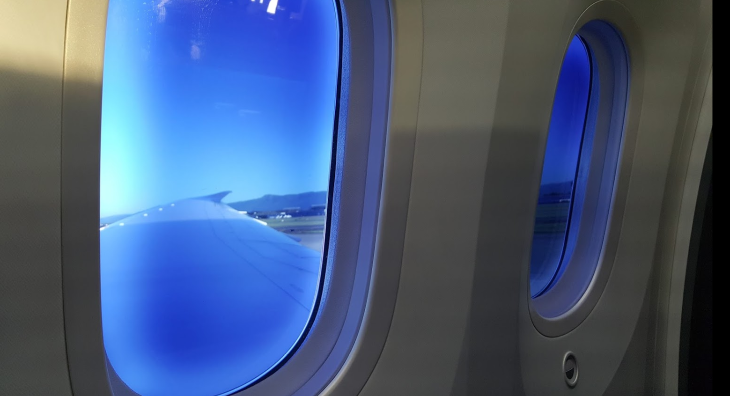 British Airways 787 windows