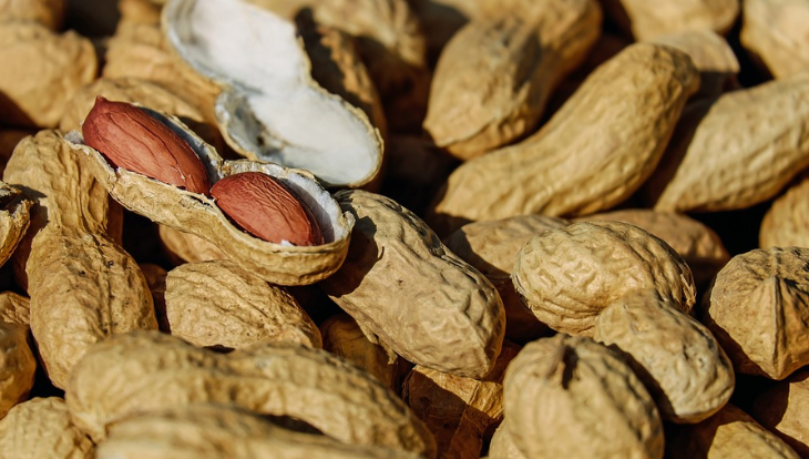 Only two US airlines now serve peanuts: Delta and Southwest (Image: Pixabay)