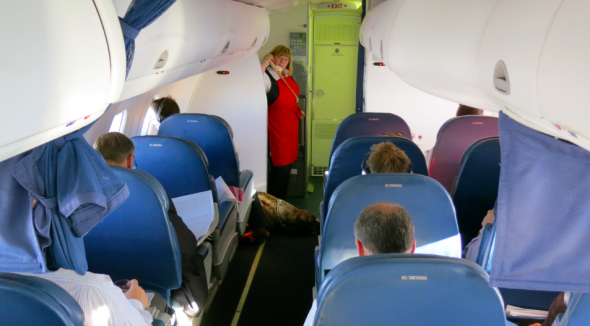 Full first class section on Delta's California Shuttle to LAX. Note the Great Dane service dog in the bulkhead! (Chris McGinnis)
