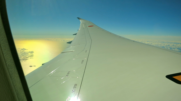 Looking out at the bowed wing of ANA's 787 to Tokyo and pondering 2014 (Photo:  Chris McGinnis)