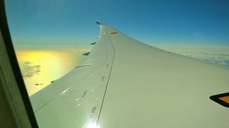It's breathtaking to see the elegant bow of the 787's wing during flight. (Chris McGinnis)