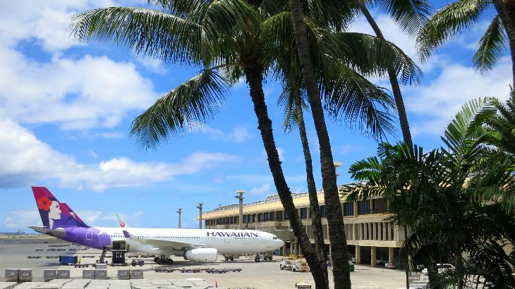 Hawaiian Airlines new Airbus A330s are its long haul workhorses (Photo: Chris McGinnis)