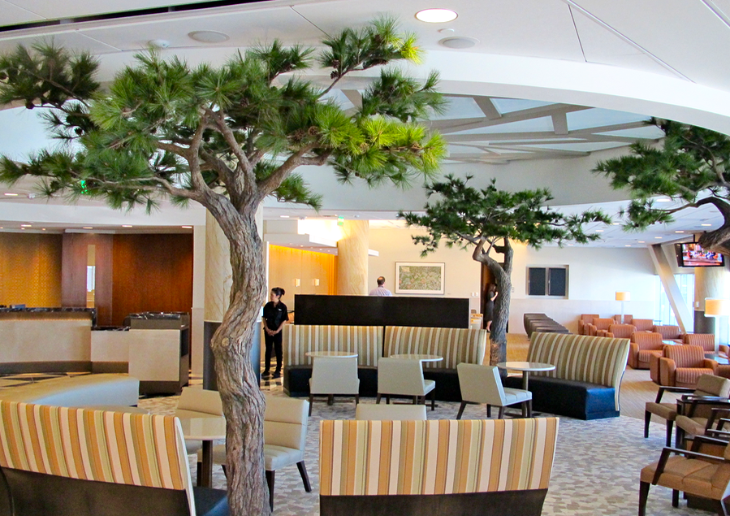 American's Admiral's Club at SFO has unusual bonsai type trees (Image Chris McGinnis)