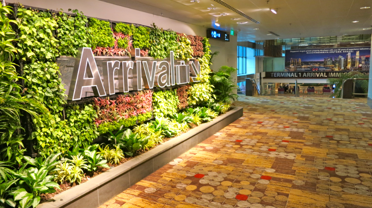 A garden wall at Singapore's magnificent Changi International Airport (Photo: Chris McGinnis)